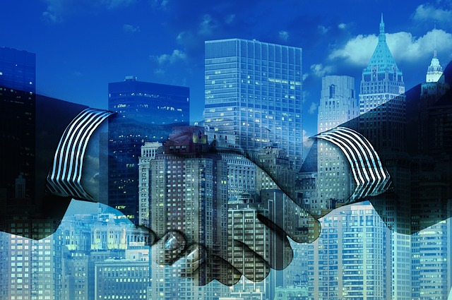 msp partner top suppliers